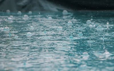 Universal like Rivulets of Rainwater