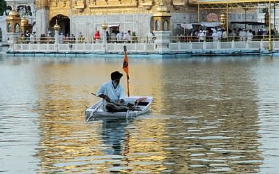Do You Know How the Golden Temple Sarovar is Kept Clean and Clear?