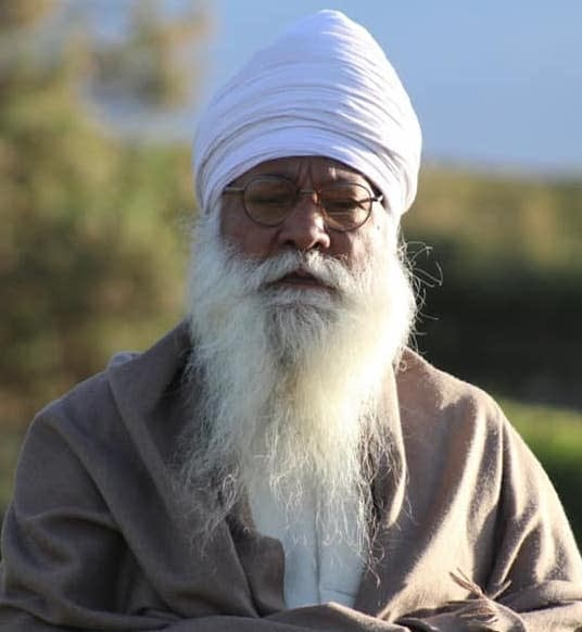 Bhai Partap Singh Khalsa